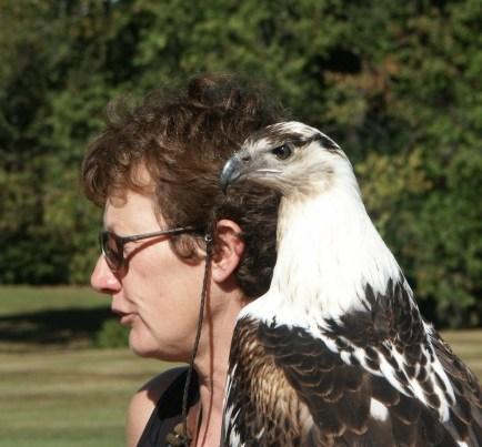 Birds of Prey Centre - 0126